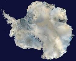 Antarcticap