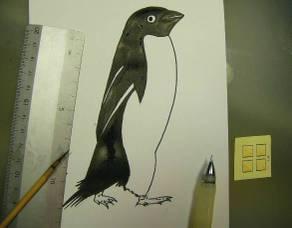 Penguin_032
